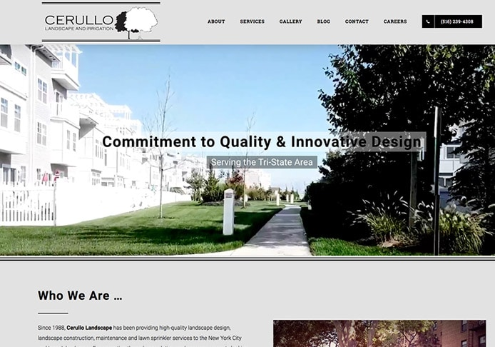 professional web design company fountain valley